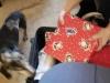 I see presents!