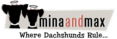 minaandmax.com
